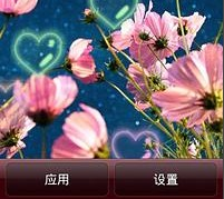 清新唯美花卉動態壁紙