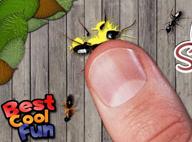 打蚂蚁 Ant Smasher V4.3