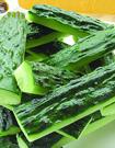 黃瓜減肥的正確方法