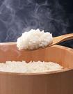 不吃米飯能減肥嗎