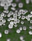 竹鹽:排毒減肥顯奇效